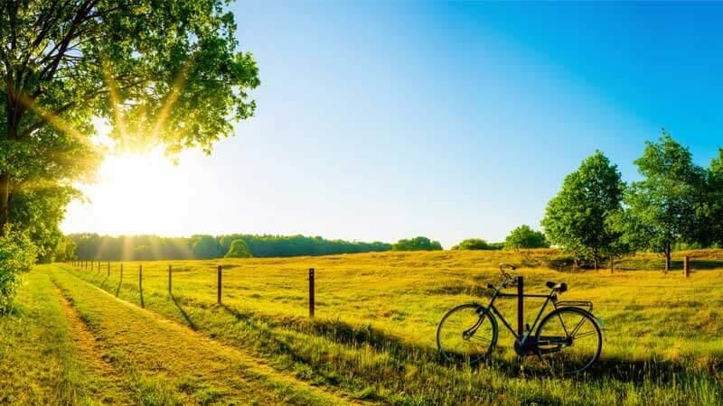 sfondo-biciclietta.terenzi