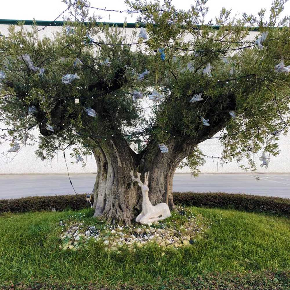 albero-natale-terenzi